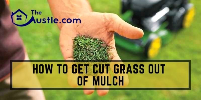 How To Get Cut Grass Out Of Mulch