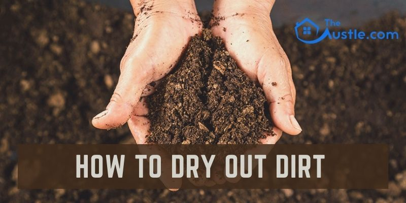 How To Dry Out Dirt