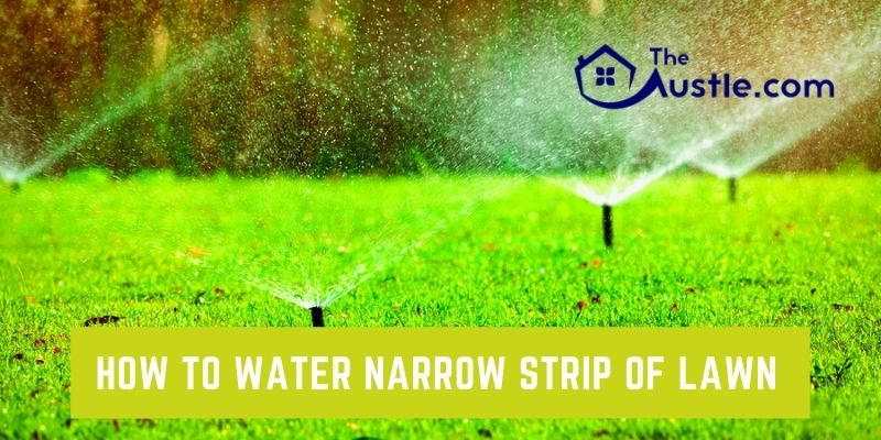 how to water narrow strip of lawn