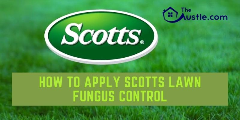 How to Apply Scotts Lawn Fungus Control