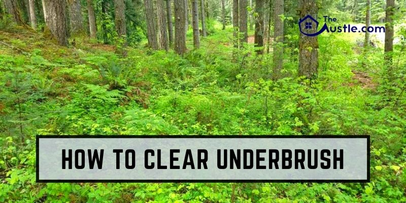 How To Clear Underbrush