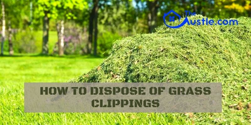 How To Dispose Of Grass Clippings
