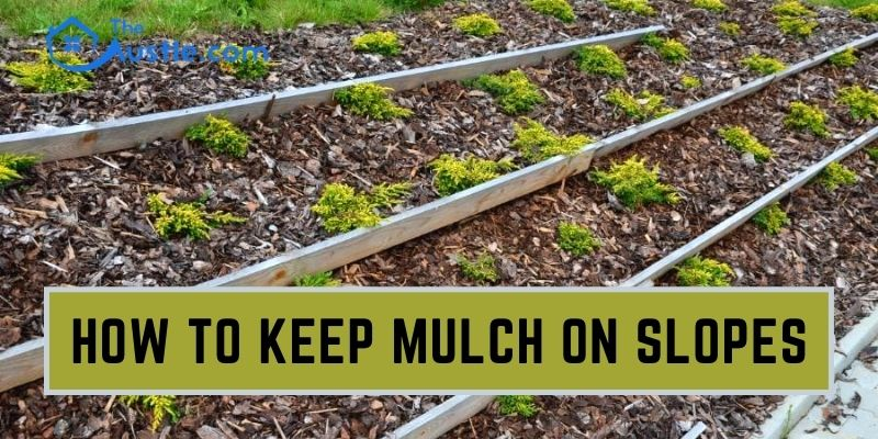 How To Keep Mulch On Slopes