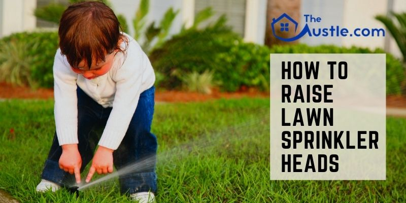 How To Raise Lawn Sprinkler Heads