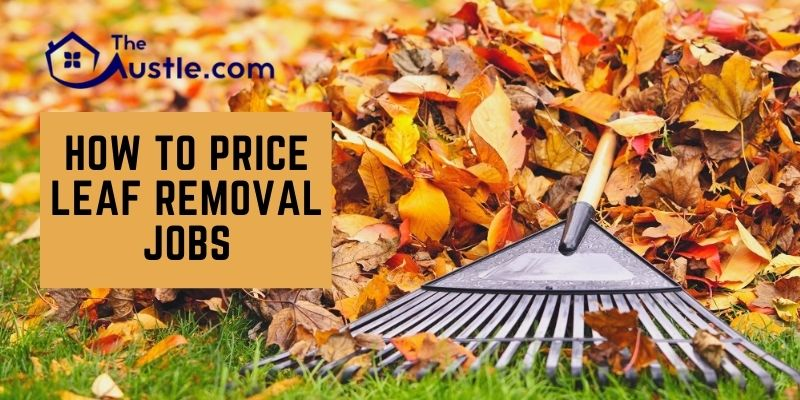 How To Price Leaf Removal Jobs