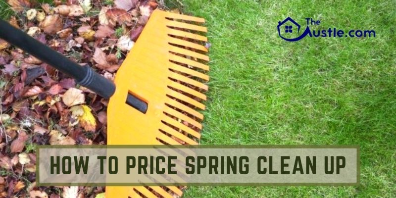 How To Price Spring Clean Up