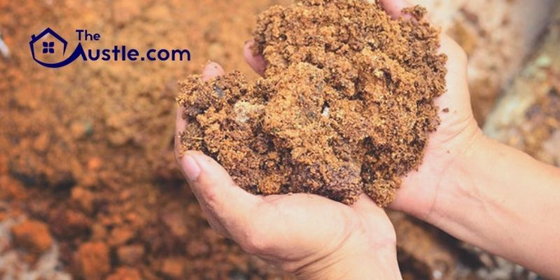 What Is The Difference Between Organic And Inorganic Soil Conditioners